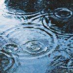 梅雨のアンチエイジング。